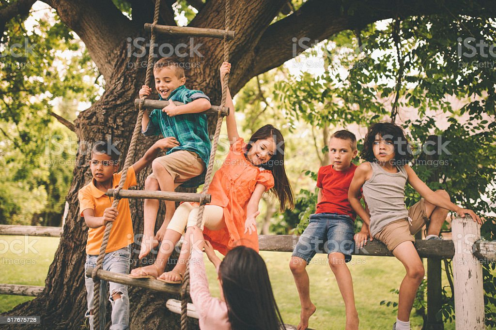 Children playing on fence and rope ladder in a park stock photo