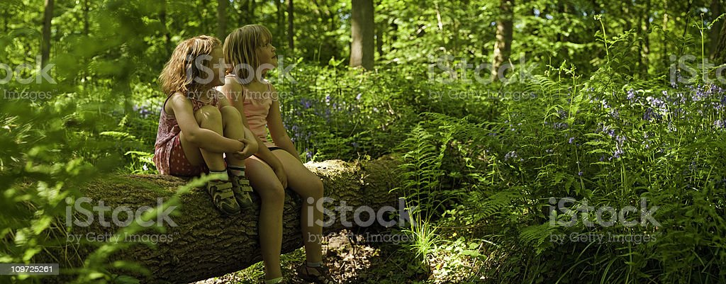 Children sat on log in vibrant wild green forest panorama royalty-free stock photo