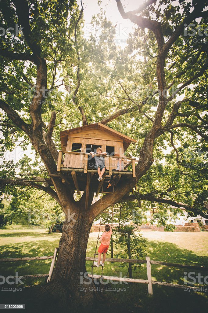 Children sitting in a treehouse with one friend climbing up stock photo