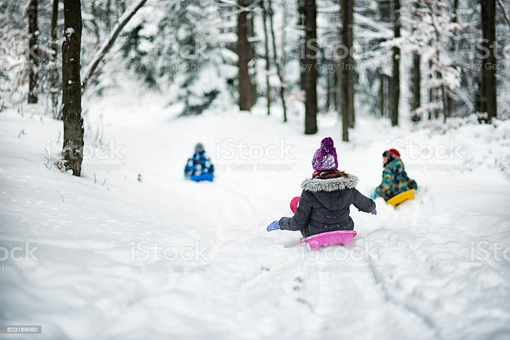 Children sledding in winter forest. stock photo