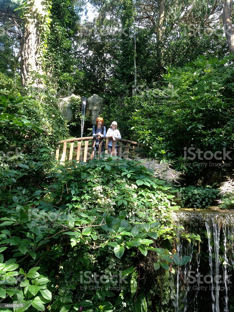 Children stood on a viewing platform over a waterfall stock photo