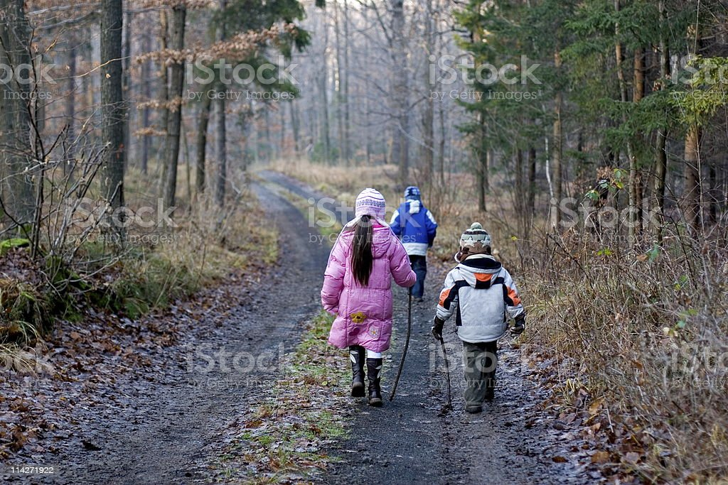 Children Walking In Winter Forest royalty-free stock photo