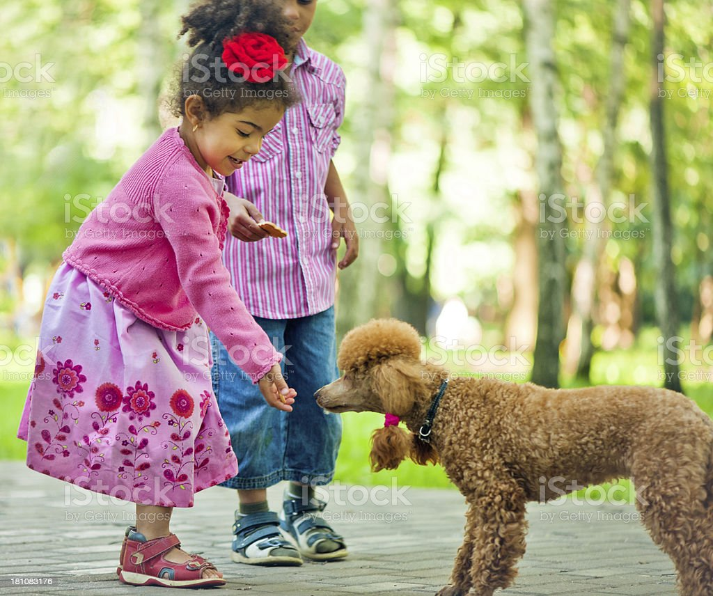 Children with poodle royalty-free stock photo