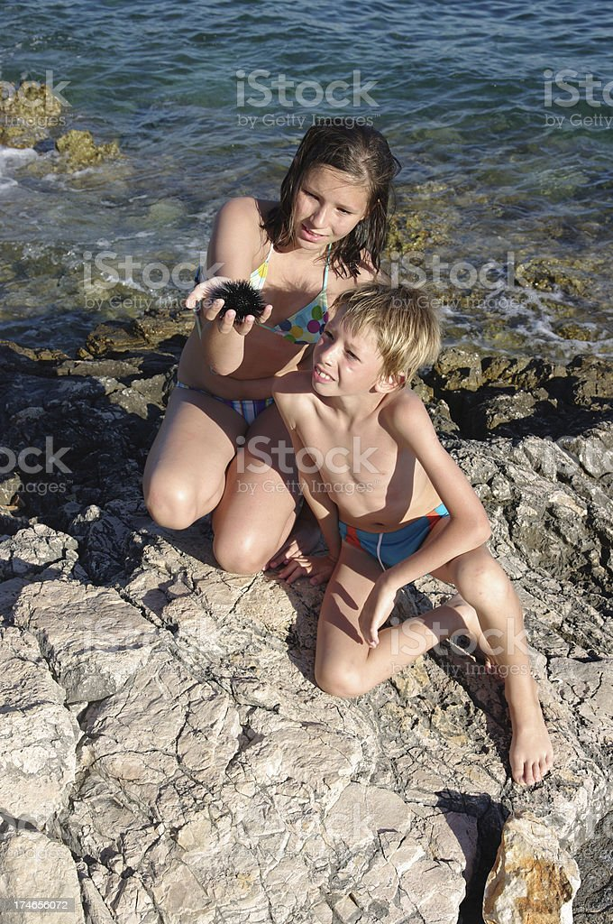 Children with sea hedgehog royalty-free stock photo