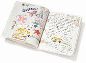 child's diary