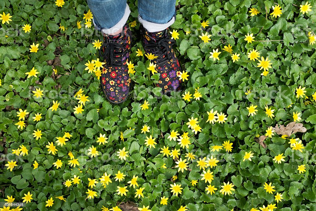 child's feet in the colored shoes on grass stock photo