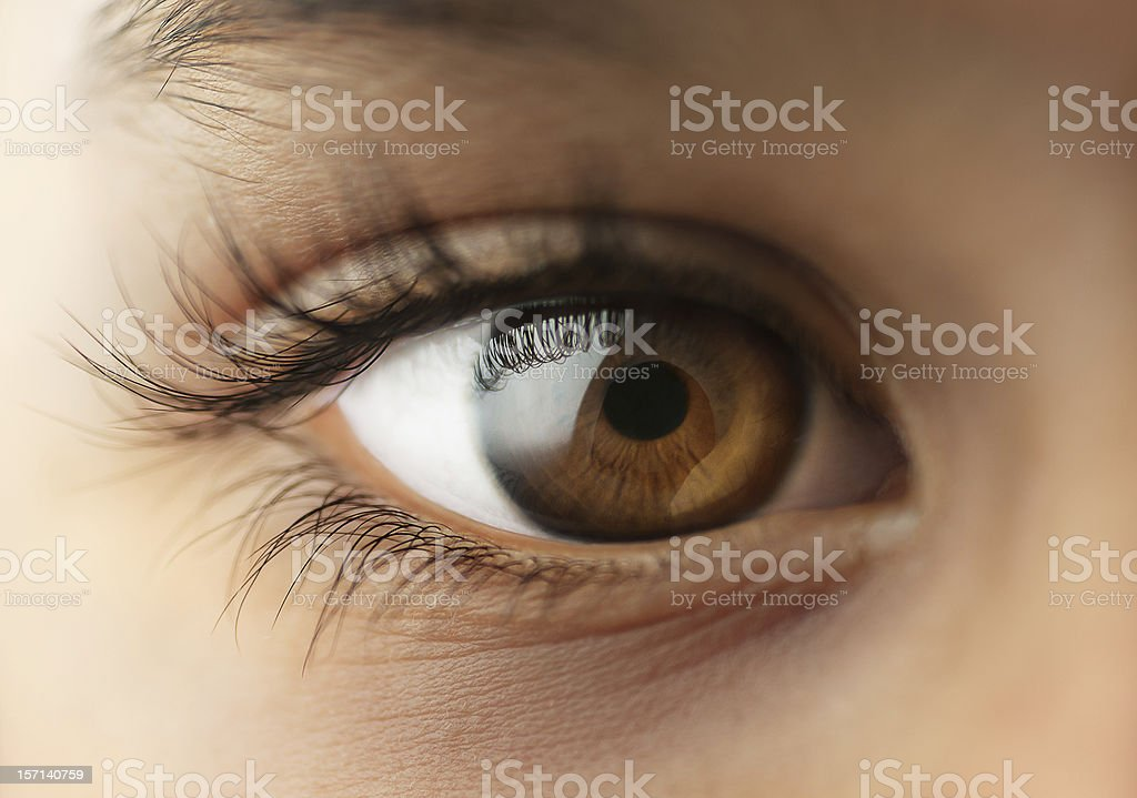 Child's human Eye stock photo