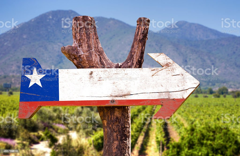 Chile Flag wooden sign with winery background stock photo