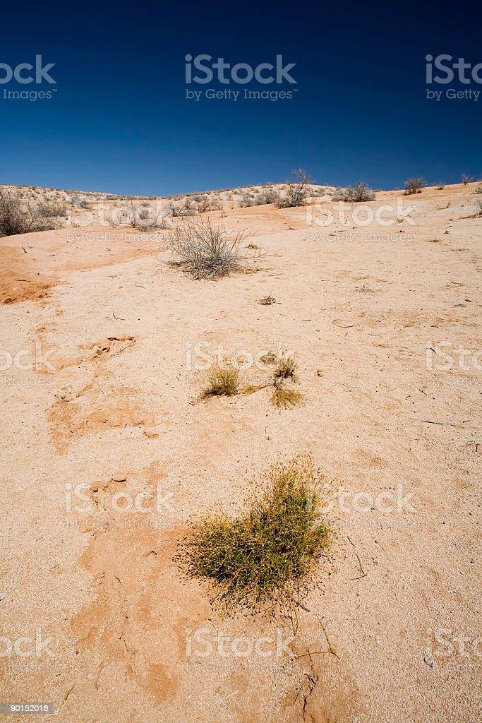 Chilean Desert stock photo