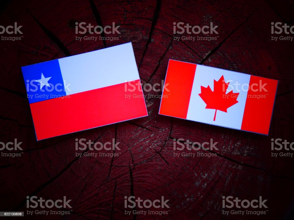 Chilean flag with Canadian flag on a tree stump isolated stock photo