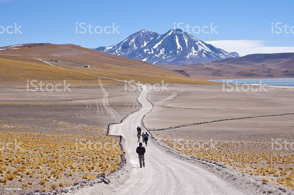 Chilean high plateau royalty-free stock photo