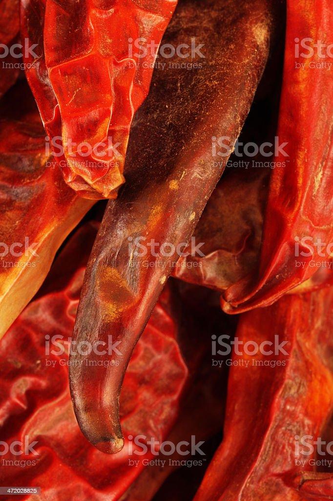 Chili Pepper Capsicum annuum Solanaceae royalty-free stock photo