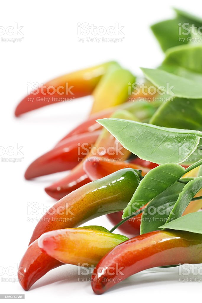 Chili peppers royalty-free stock photo