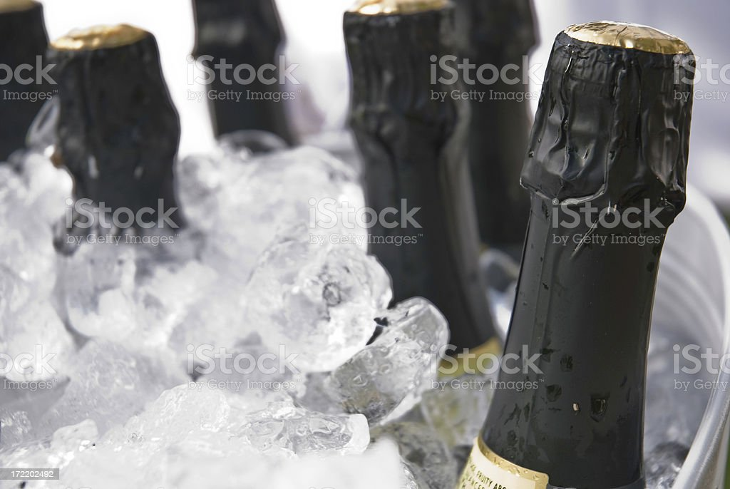 Chilled Chamapagne royalty-free stock photo