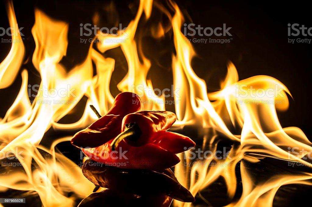 chilli flames stock photo