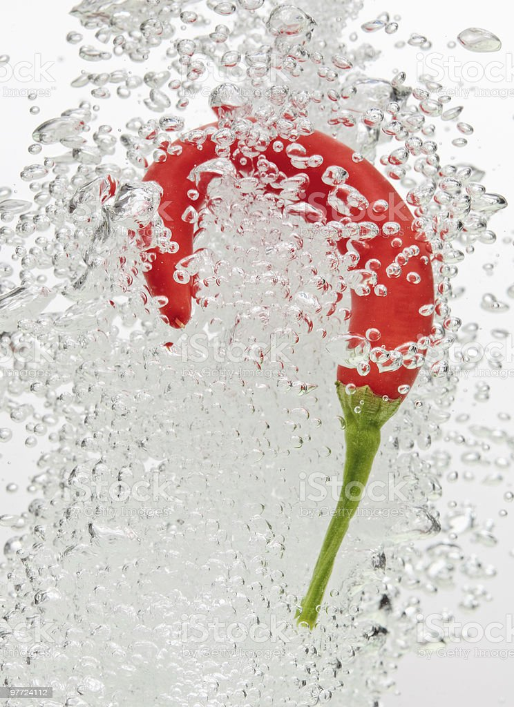 Chilli pepper falling in water with air bubbles royalty-free stock photo