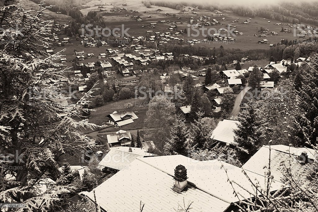 Chilly Day in May, Swiss Alps, Monochromatic stock photo