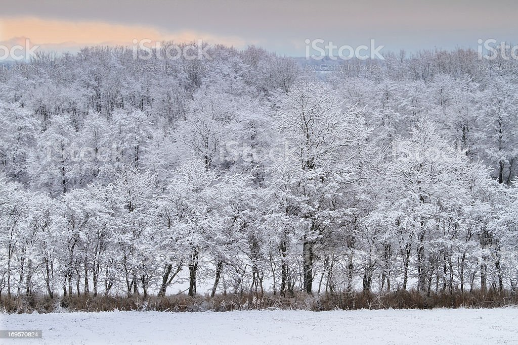 Chilly landscapes stock photo