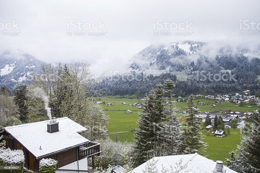 Chilly Spring Snowfall in Swiss Alps, valley floor stock photo
