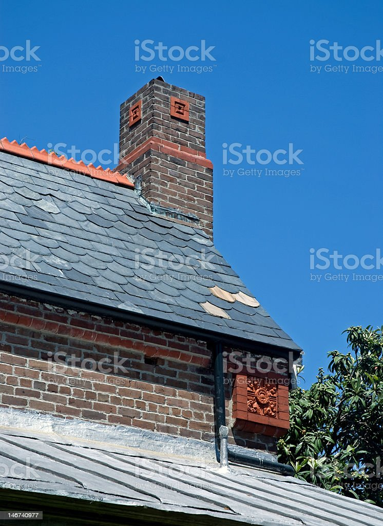Chimneys and Rooftops in Charleston royalty-free stock photo