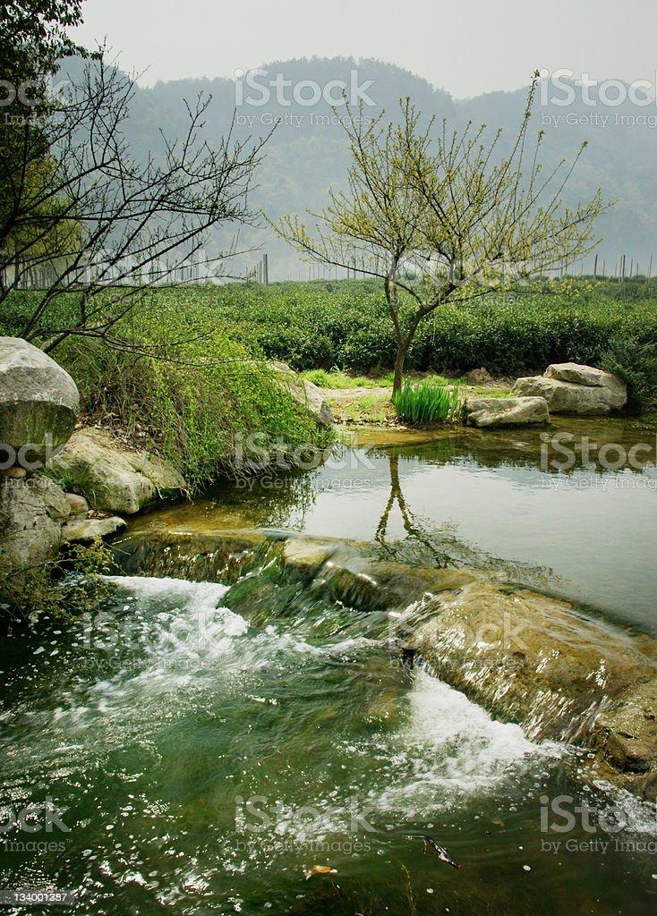 China River Landscape royalty-free stock photo