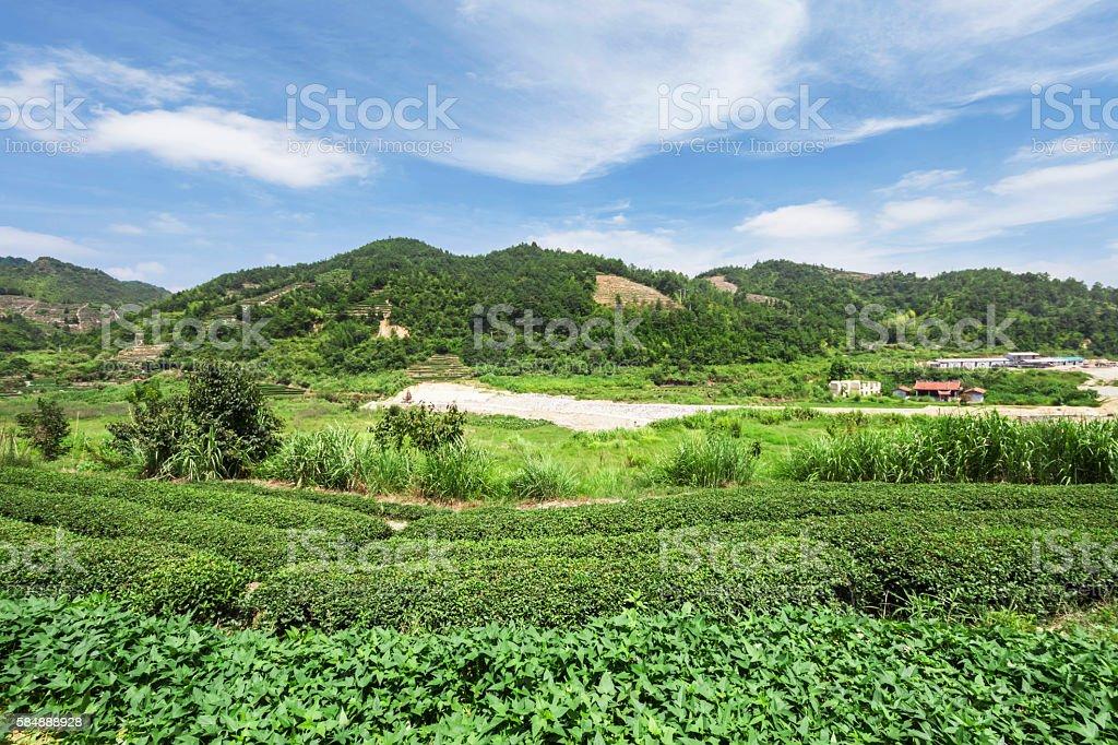 China's countryside stock photo