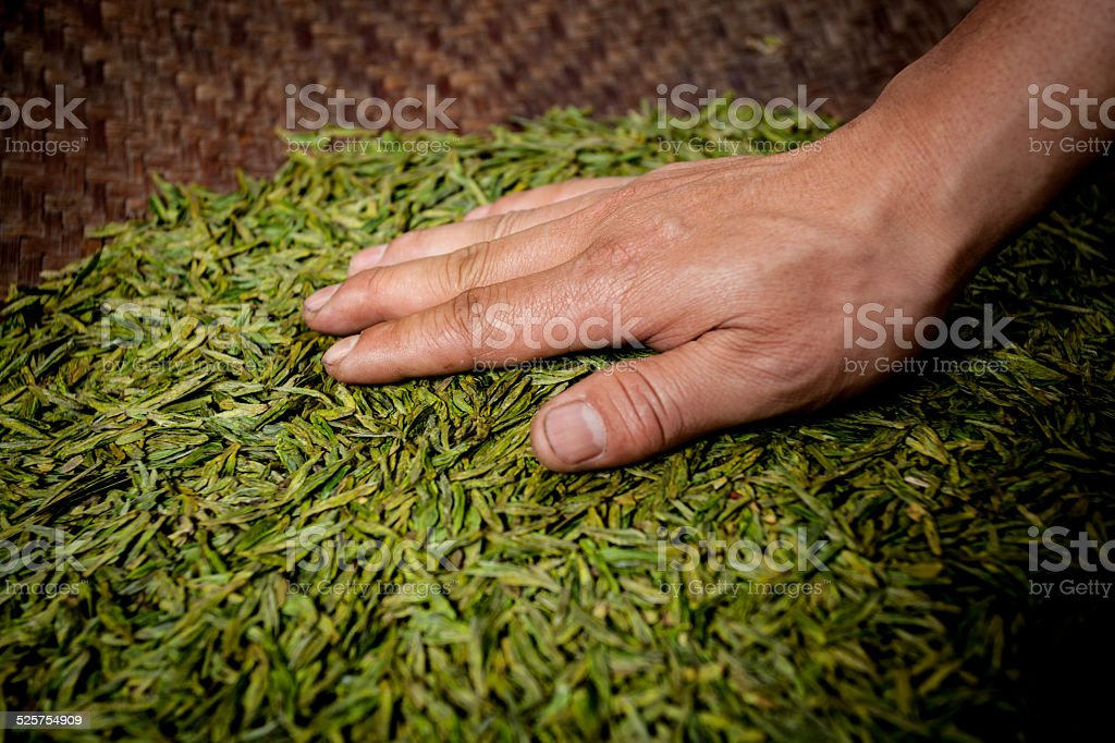 China's tea production stock photo