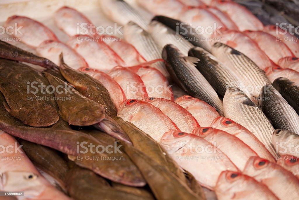 Chinatown Fish Market royalty-free stock photo