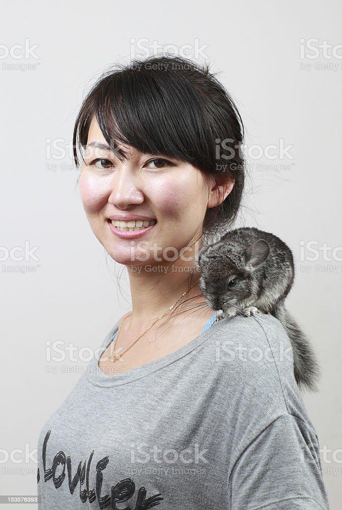 Chinchilla Cat royalty-free stock photo