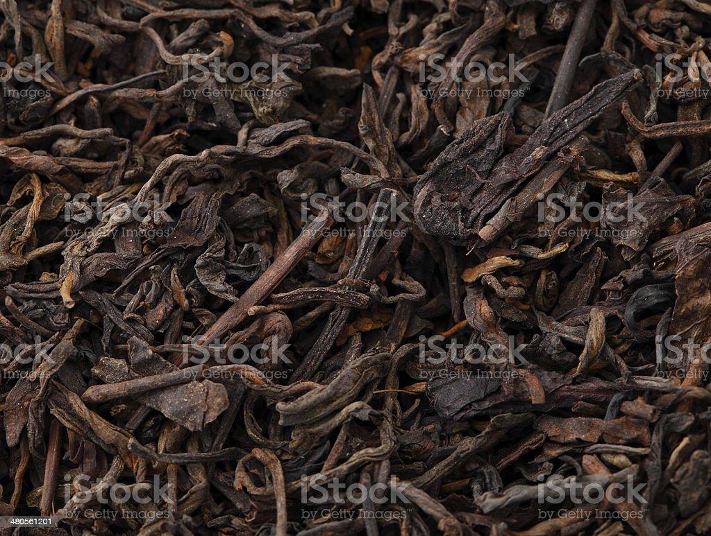 Chinese black tea stock photo