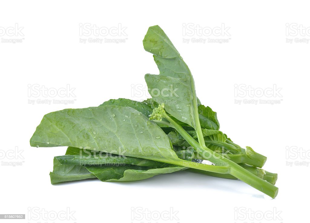 Chinese Brocolli  on white  background stock photo
