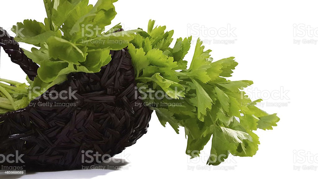 Chinese cabbage stock photo
