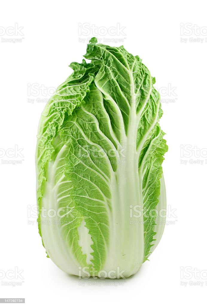 Chinese cabbage standing isolated stock photo