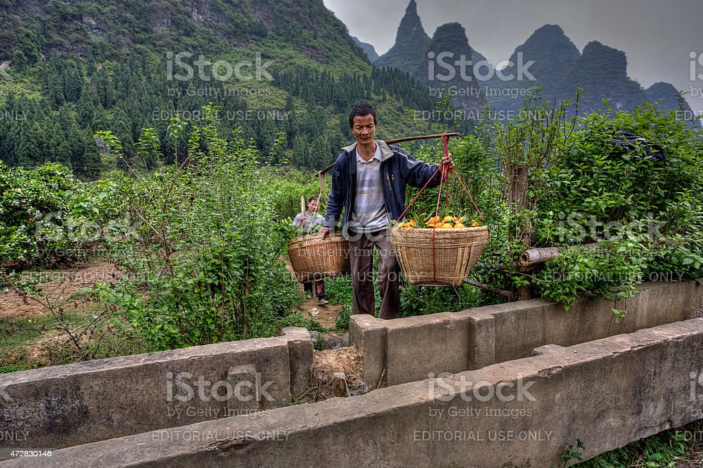 Chinese carrying pole over shoulder with baskets of oranges hang stock photo