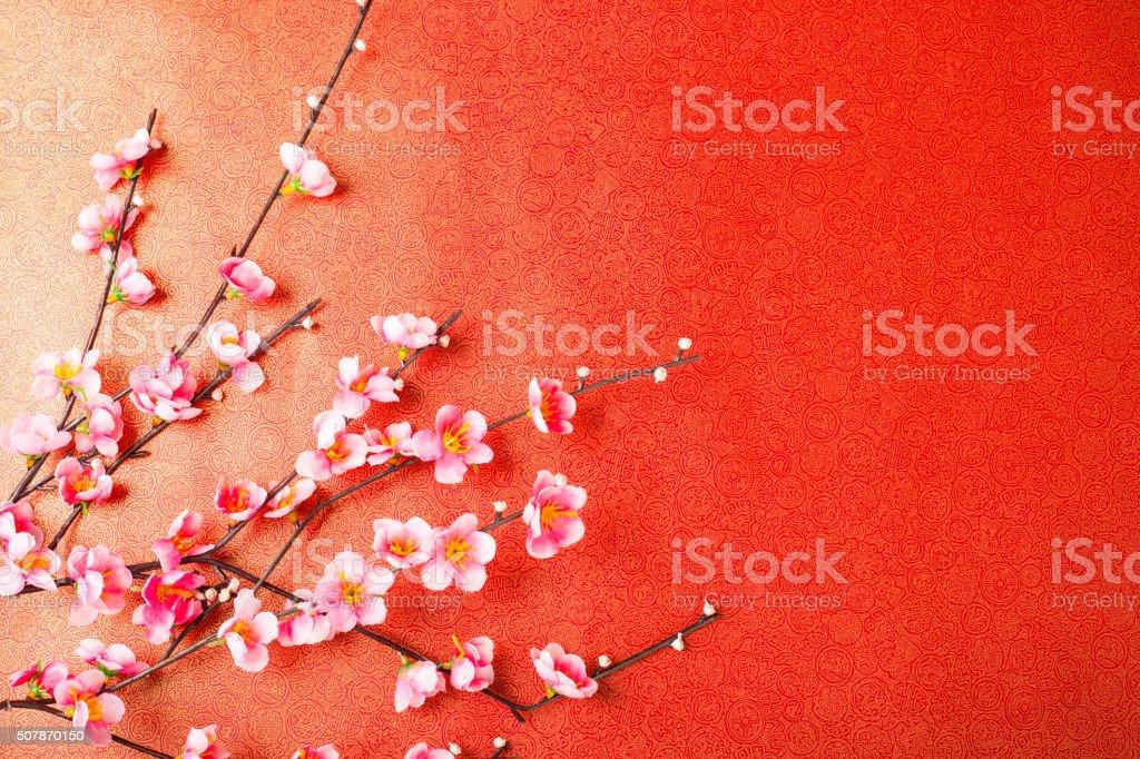Chinese cherry blossom stock photo