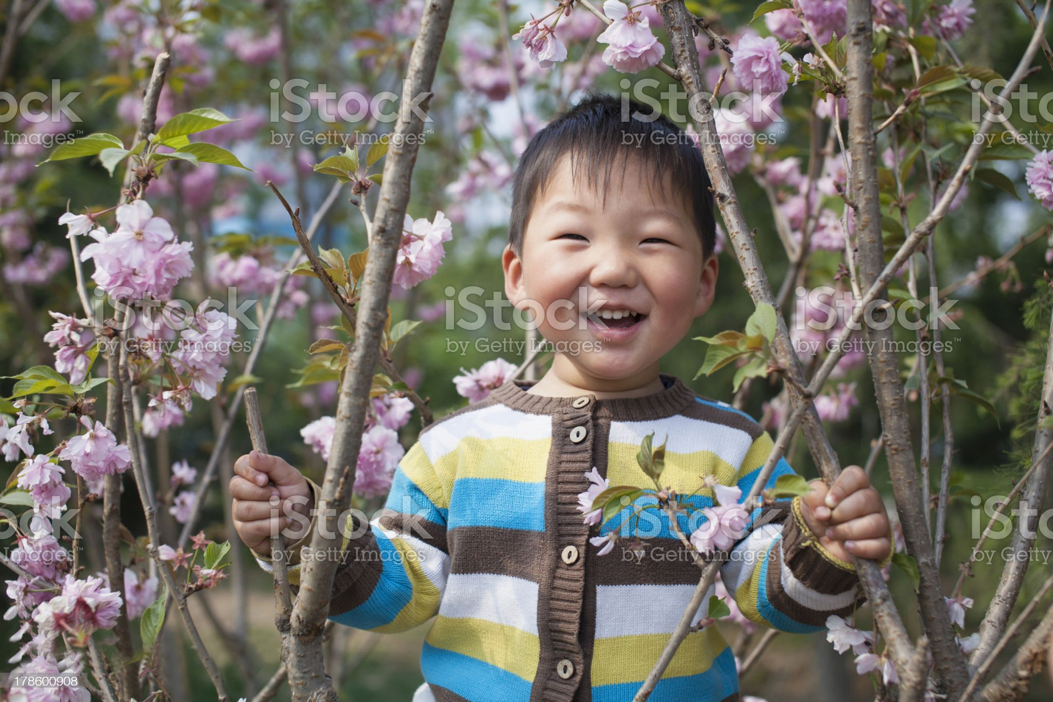 Chinese children royalty-free stock photo