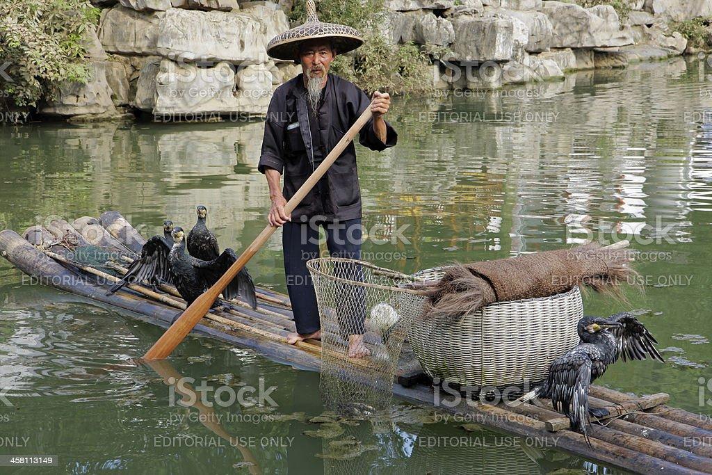 Chinese cormorant fisherman stock photo
