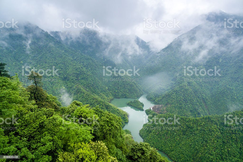 Chinese forest, rain and fog in the rainy season. stock photo