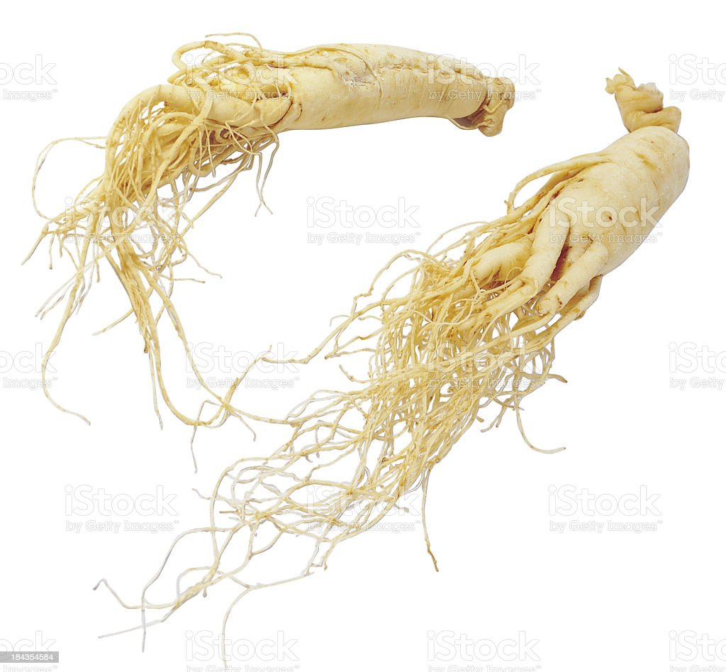Chinese Ginseng Herbs royalty-free stock photo