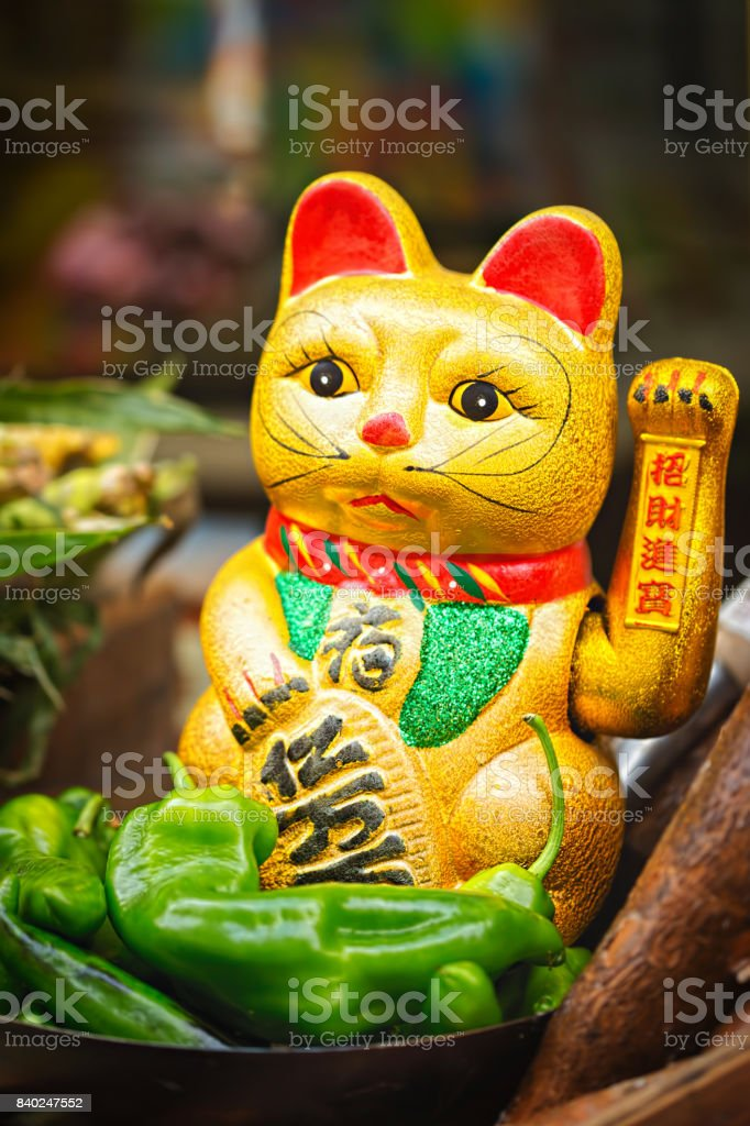 Chinese golden lucky cat figurine on food street stall, green peppers stock photo
