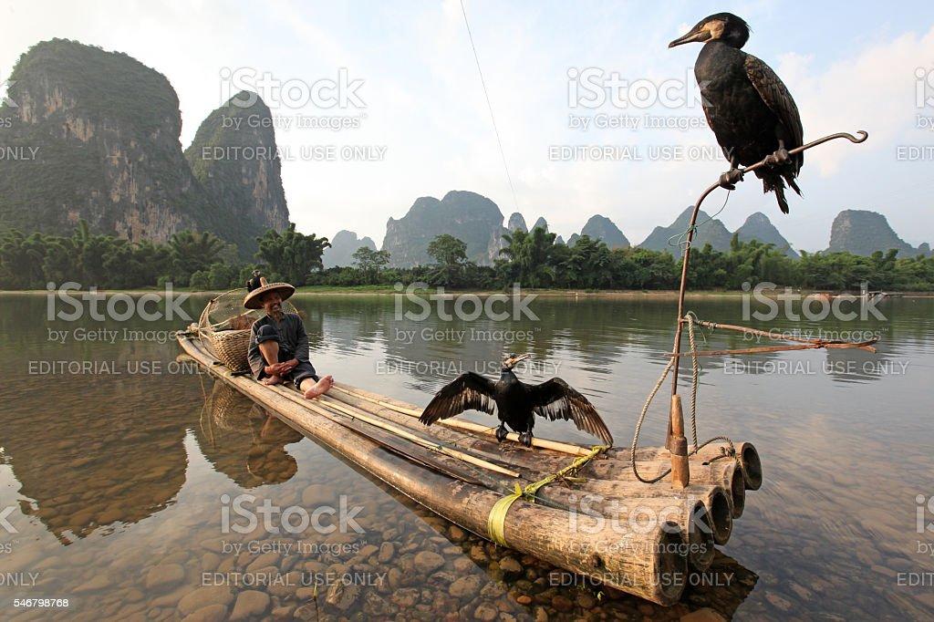 Chinese man fishing with cormorants birds stock photo