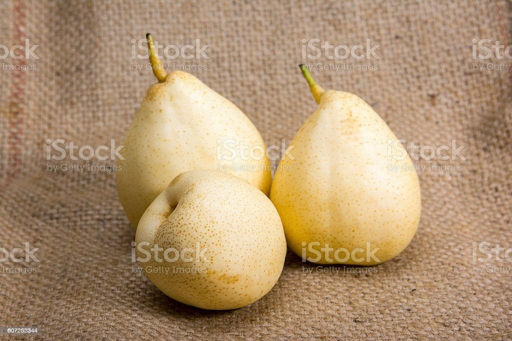 Chinese pear fruit on sack background stock photo