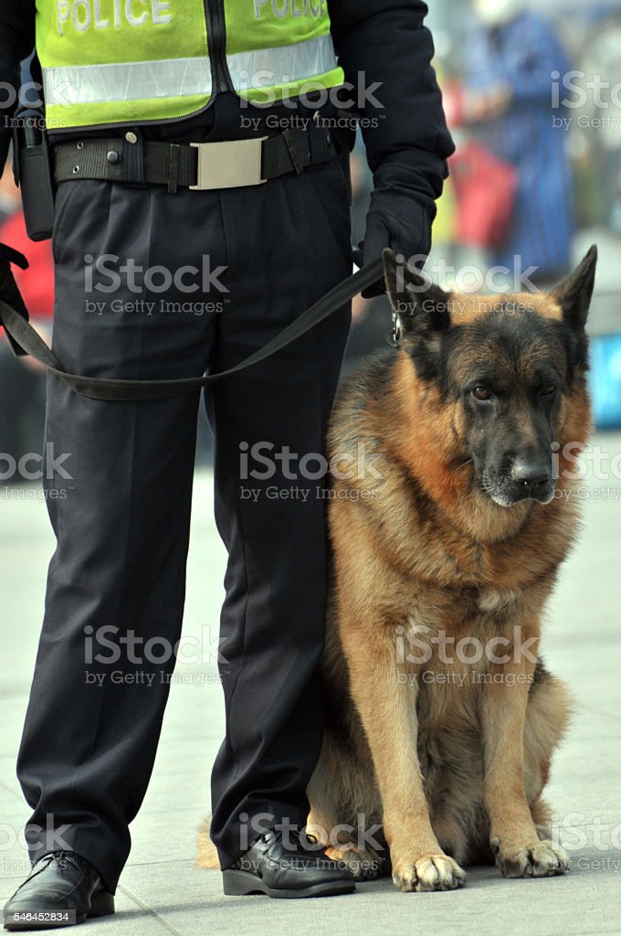 Chinese police stock photo