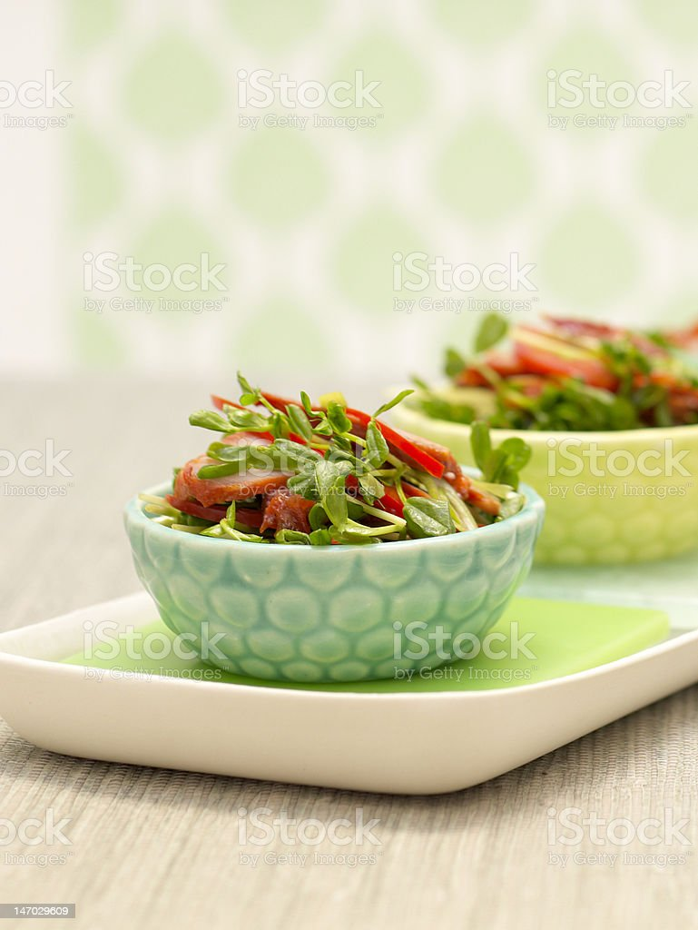 Chinese Pork Salad royalty-free stock photo