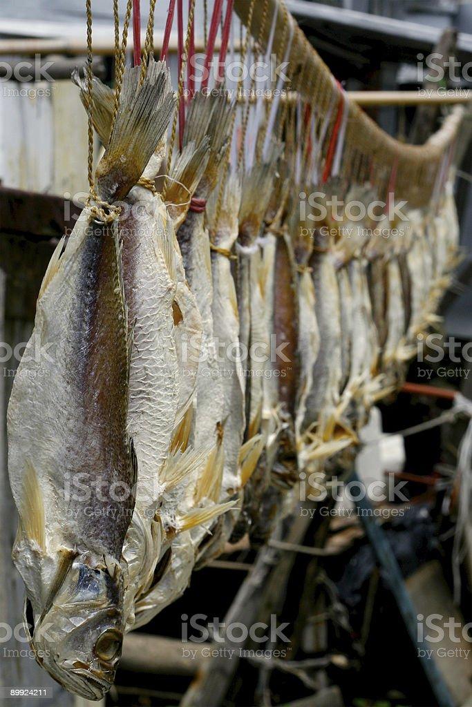 China pescado salado foto de stock libre de derechos