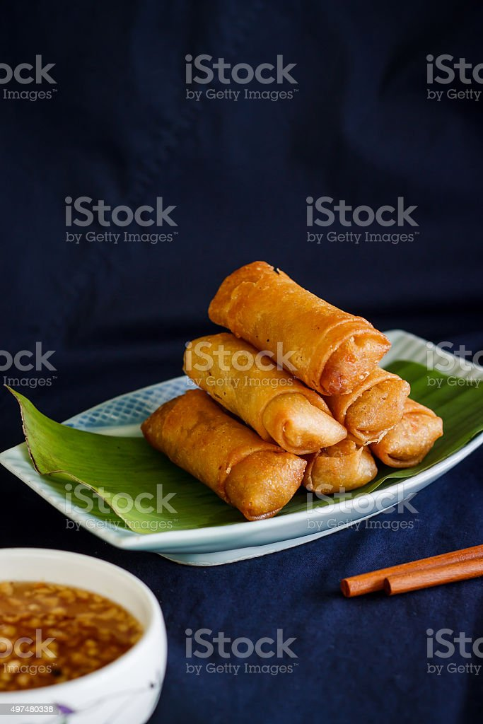 Chinese spring rolls with vegetable stock photo