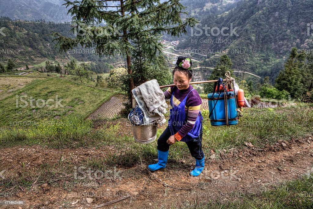 Chinese woman farmer peasant carries the weight on your shoulder stock photo