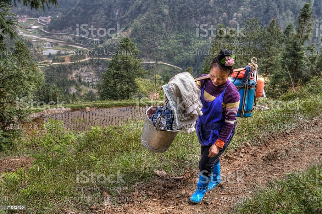 Chinese woman farmer with a yoke on his shoulder. stock photo