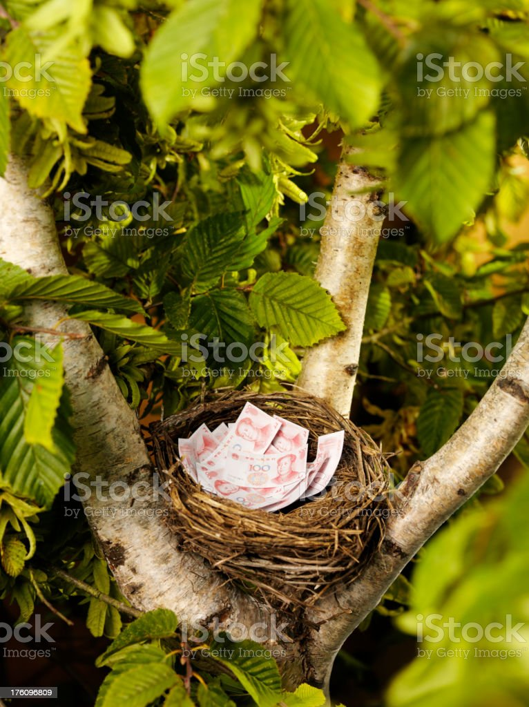 Chinese Yuan in a Bird's Nest royalty-free stock photo