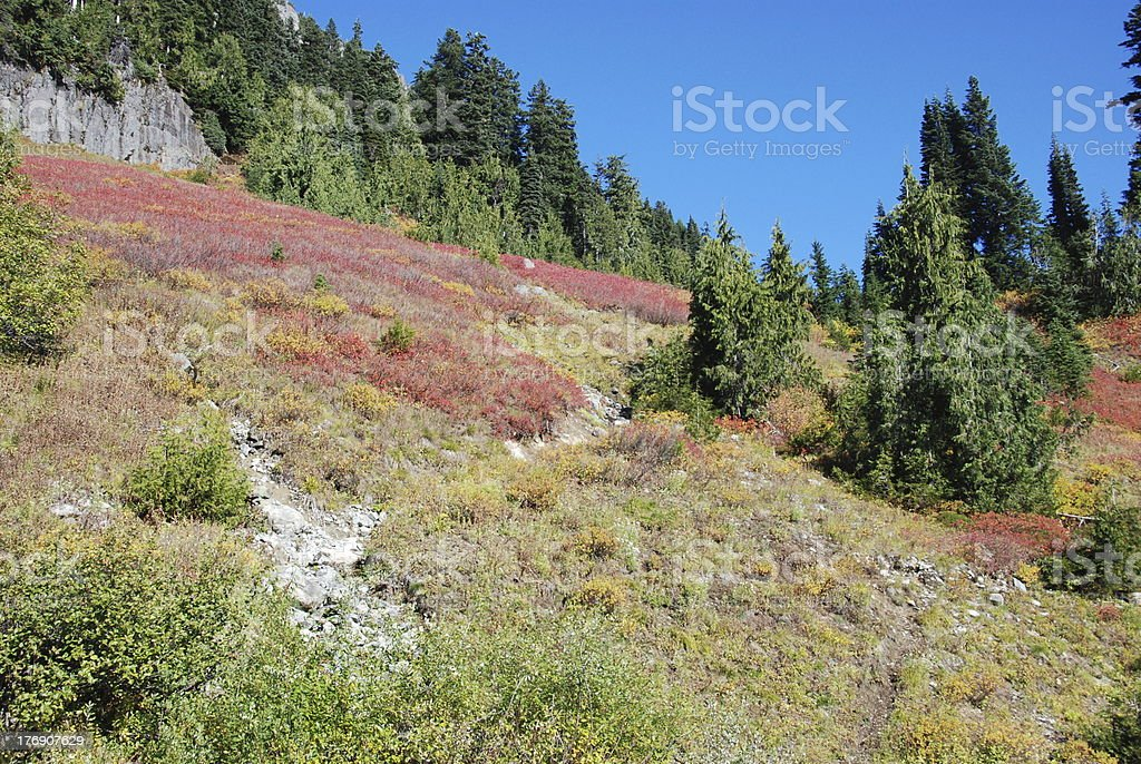Chinook Pass In Late October stock photo